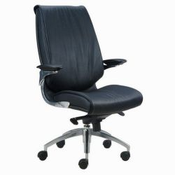 Replacement Office Chair